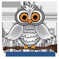 Conversation Owl